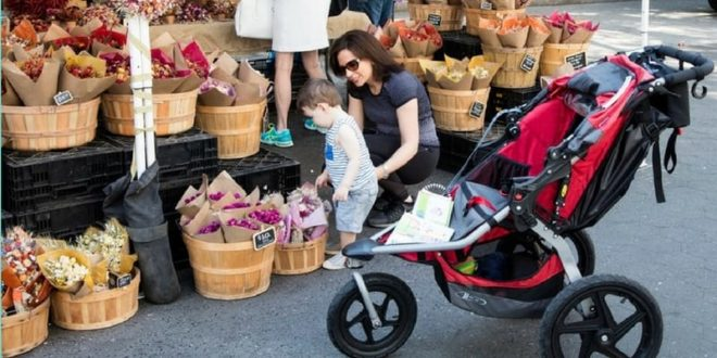 strollers needed for baby