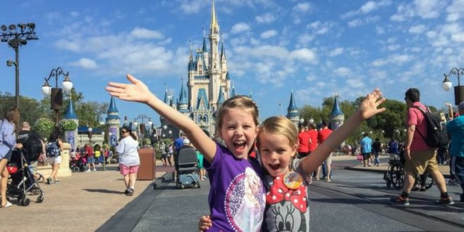 best disney world strollers