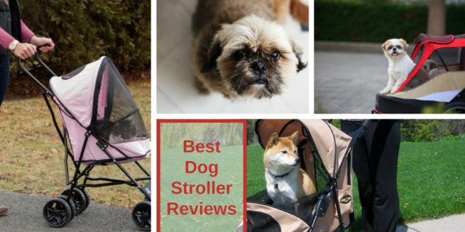 best dog strollers review