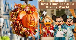 best time to go to disney world