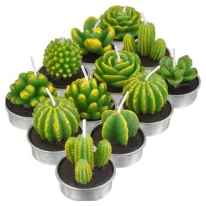 TecUnite Tealight Handmade Succulent Decoration