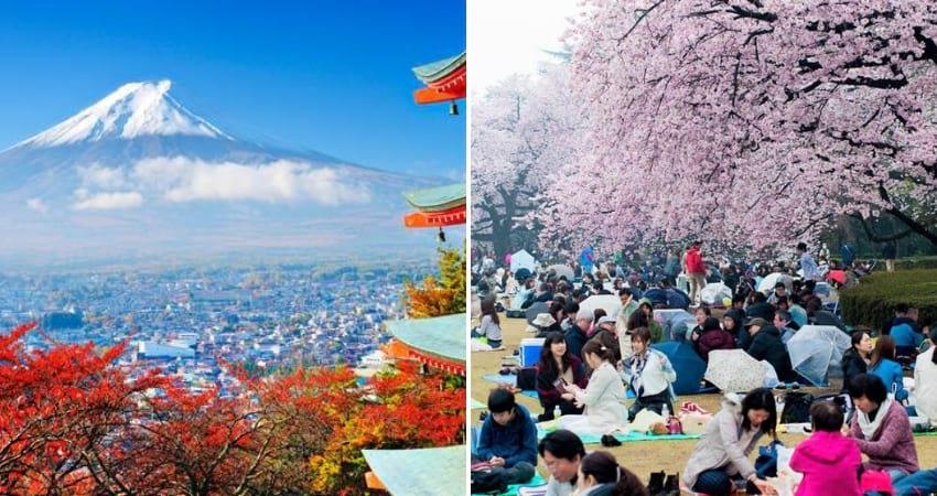 japan travel spot